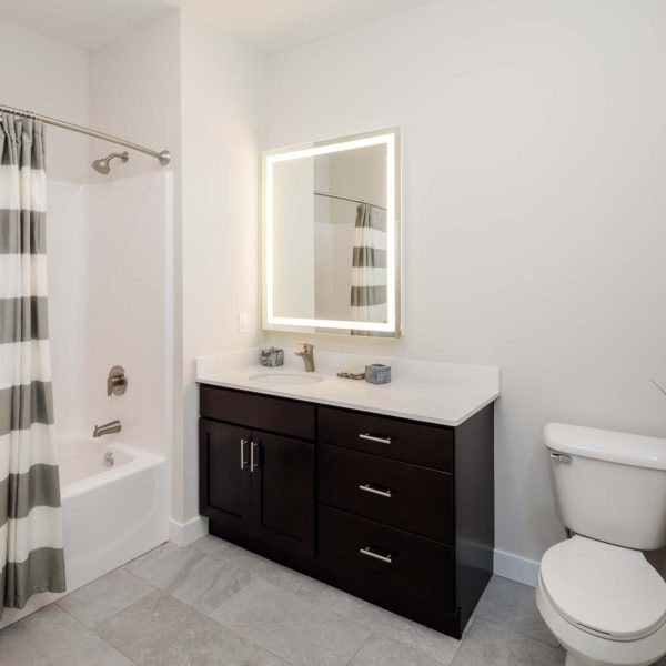 Bathroom with gray and white shower curtain and high-end vanity and finishes.
