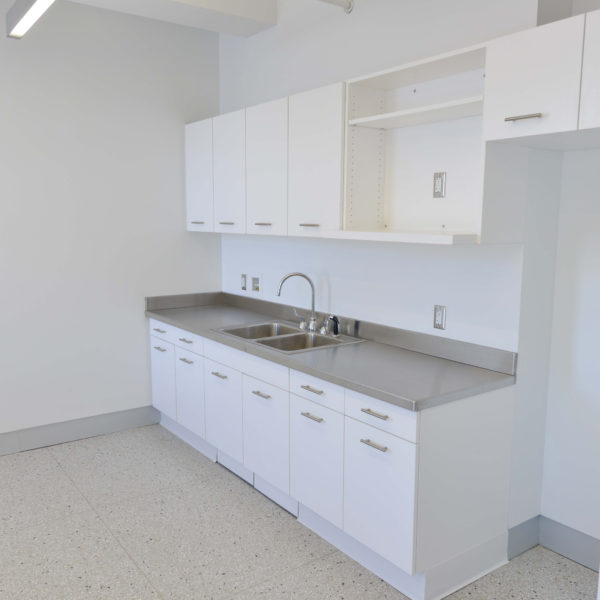 Lab sink and cabinets